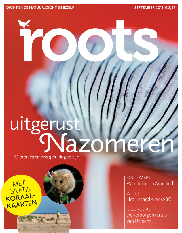 Roots is er !!!