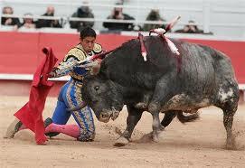 Minder stierengevechten
