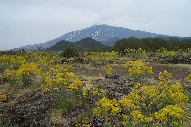 De Etna spuit weer