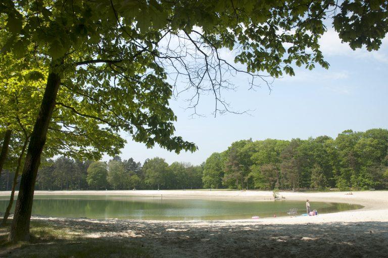 Zwemmen in de natuur