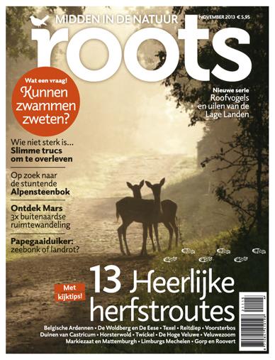 Roots blijft