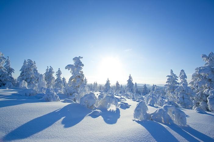Winteravontuur in het Hoge Noorden