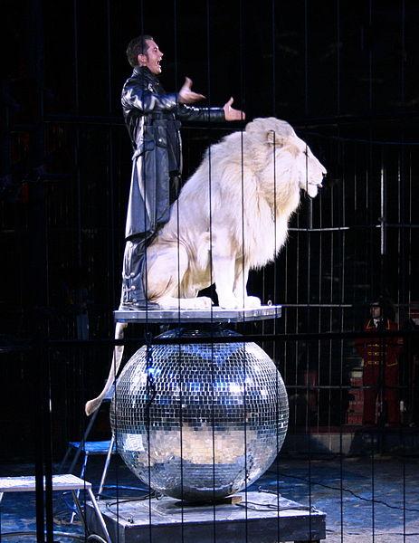 Verbod op wilde dieren in Belgische circussen