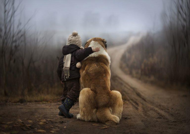 Mooie plaatjes uit Rusland