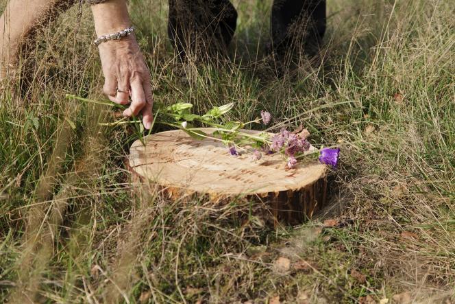 Natuurmonumenten opent natuurbegraafplaatsen
