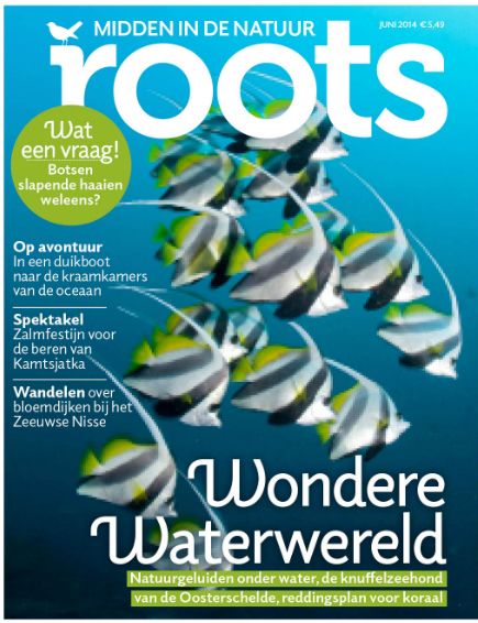 De nieuwe Roots is er