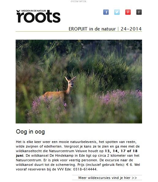 Nieuw bij Roots: wekelijks de beste natuuruitjes