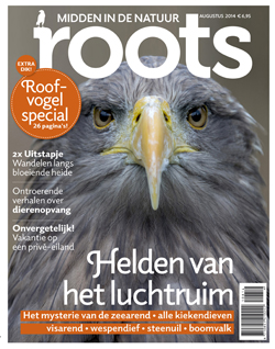 De Roots van augustus is uit!
