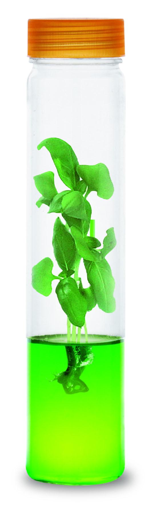 Win een Plantarium Groeibuis