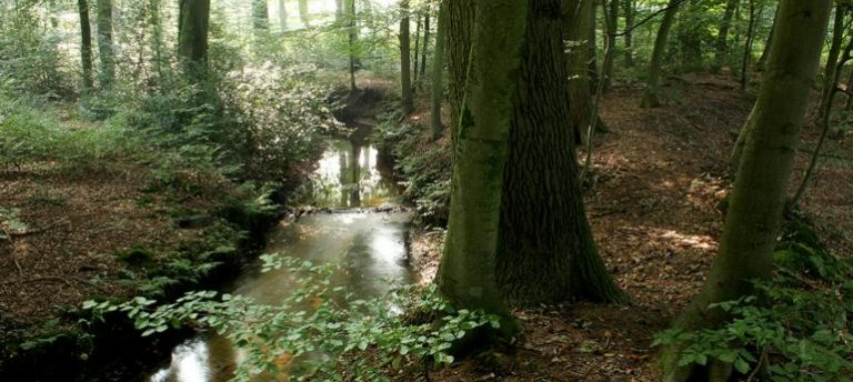 Het waterrad op landgoed Staverden draait weer