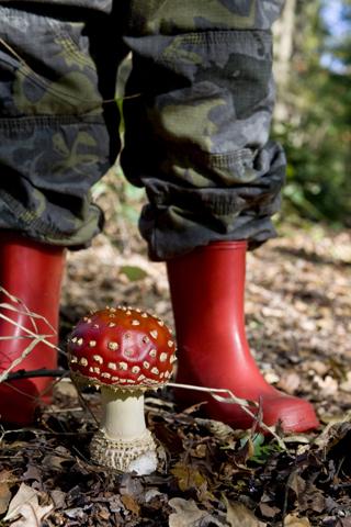 Kind met paddestoel; child with fungus