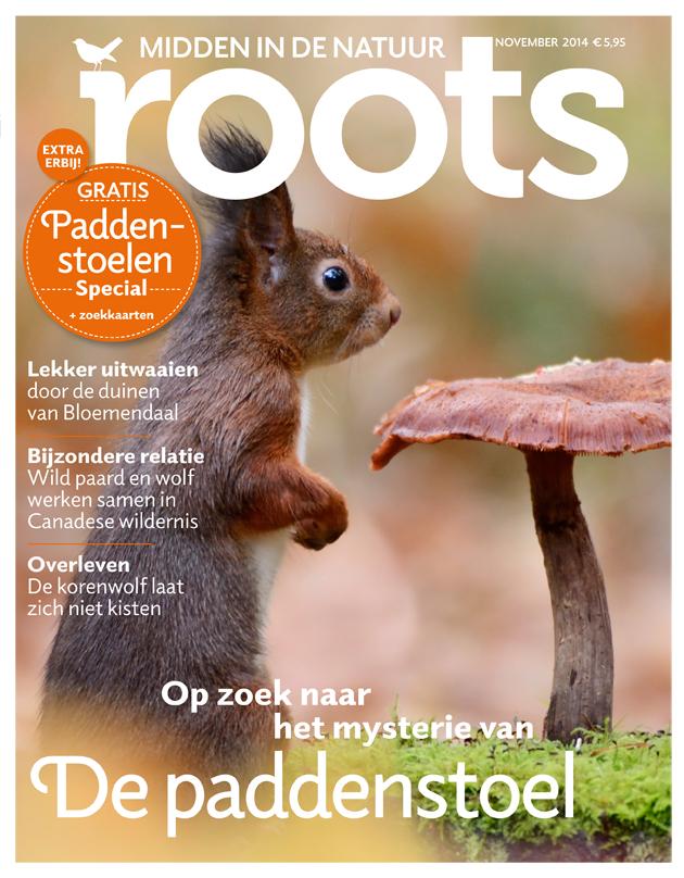 De november-Roots is uit!