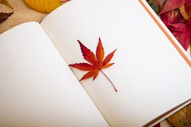 natuurdagboek