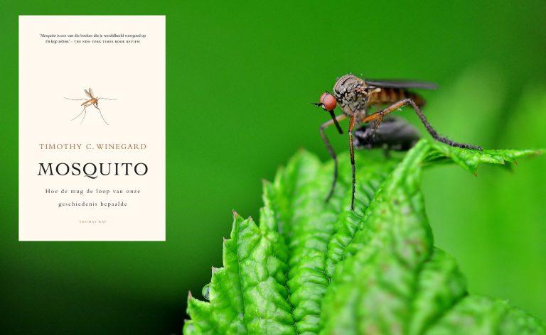 De mug: een reus van een tegenstander