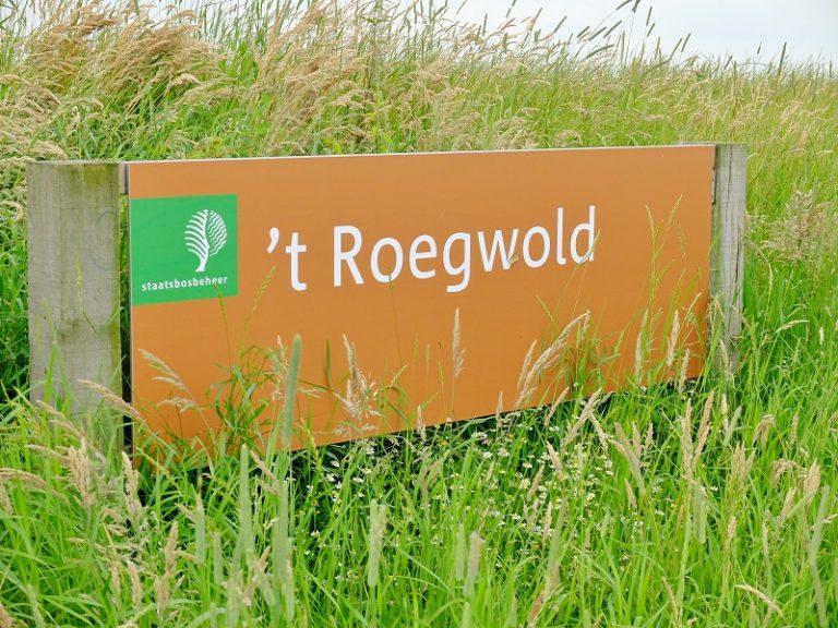 Eenmalig aanbod: bezoek nu natuurgebied 't Roegwold