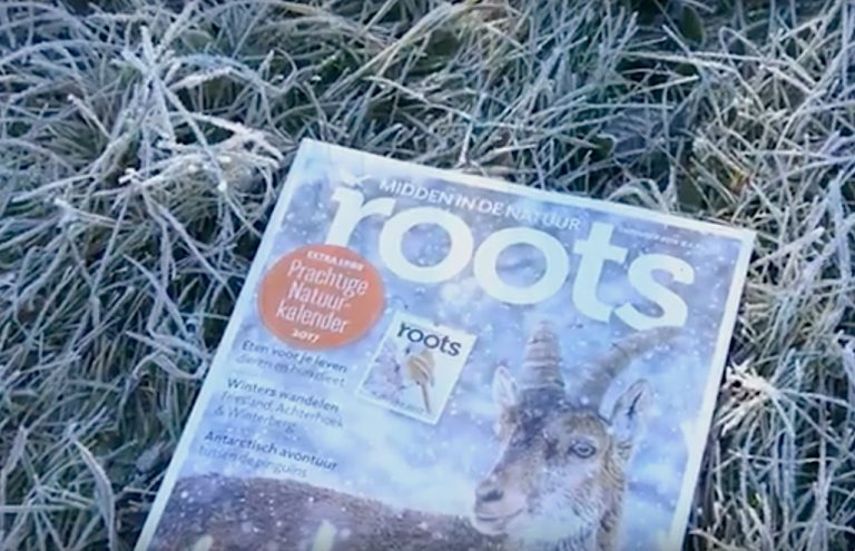 Roots december 2016