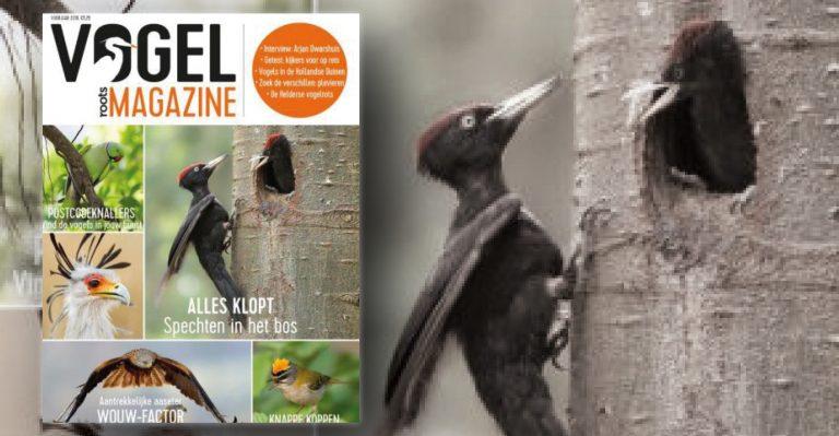 Vogelmagazine voorjaar 2019 verschijnt