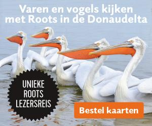 Roots reis Donaudelta