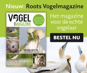 Roots Vogelmagazine – Voorjaar 2018