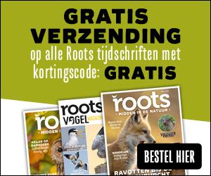 Geen verzendkosten Roots