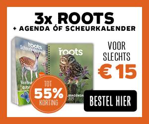 Roots aanbieding agenda kalender 2021