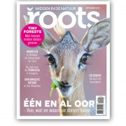 roots9-cover