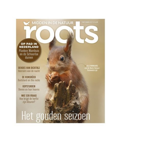 rts cover