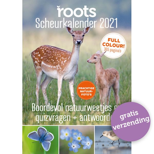 Roots Scheurkalender 2021