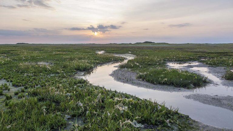 Virtueel wandelen door Nederlands mooiste natuurgebieden