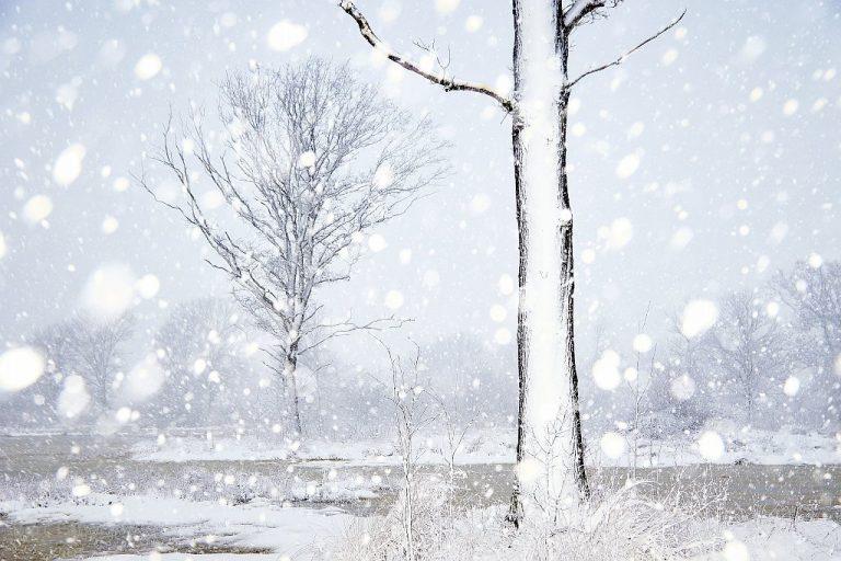 Zo fotografeer je in de sneeuw