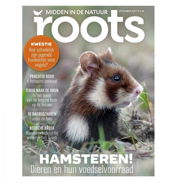 Roots editie 9-2017