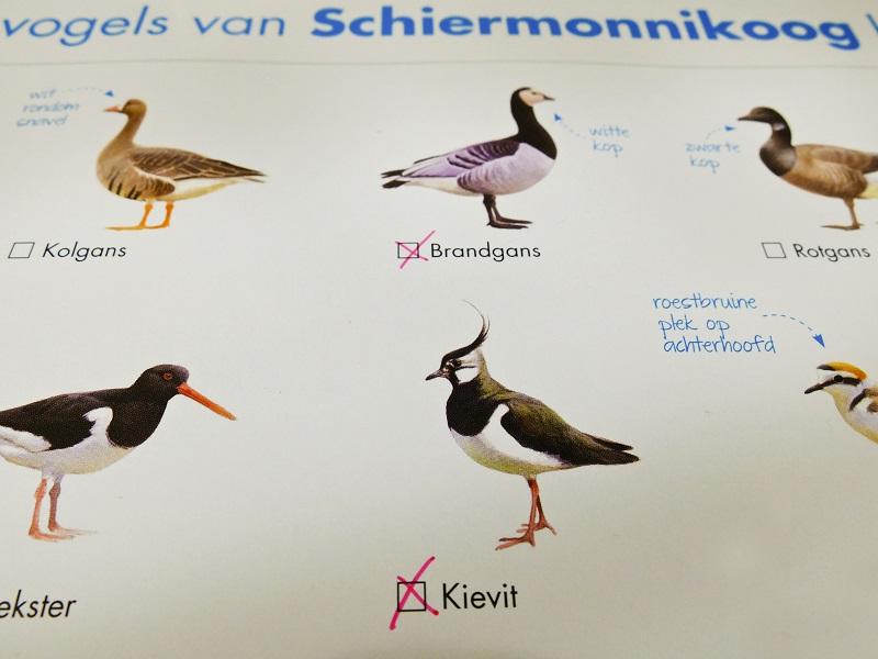 Vogelkaart