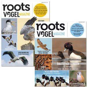Vogelmagazine 2020