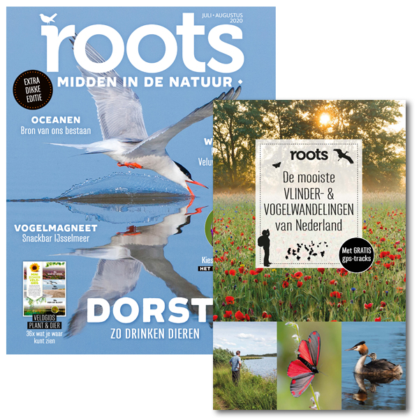 Roots wandelboek vlinders en vogels 600x600