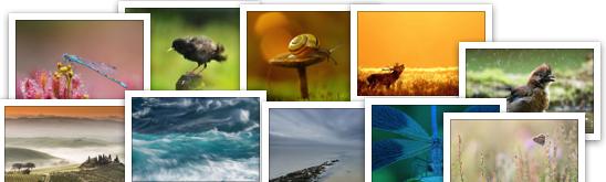 Week 3 van de verkiezing Beste Lezersfoto Aller Tijden