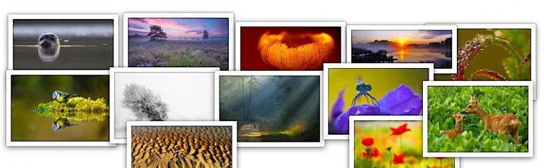 Beste Roots Lezersfoto Aller Tijden week 4