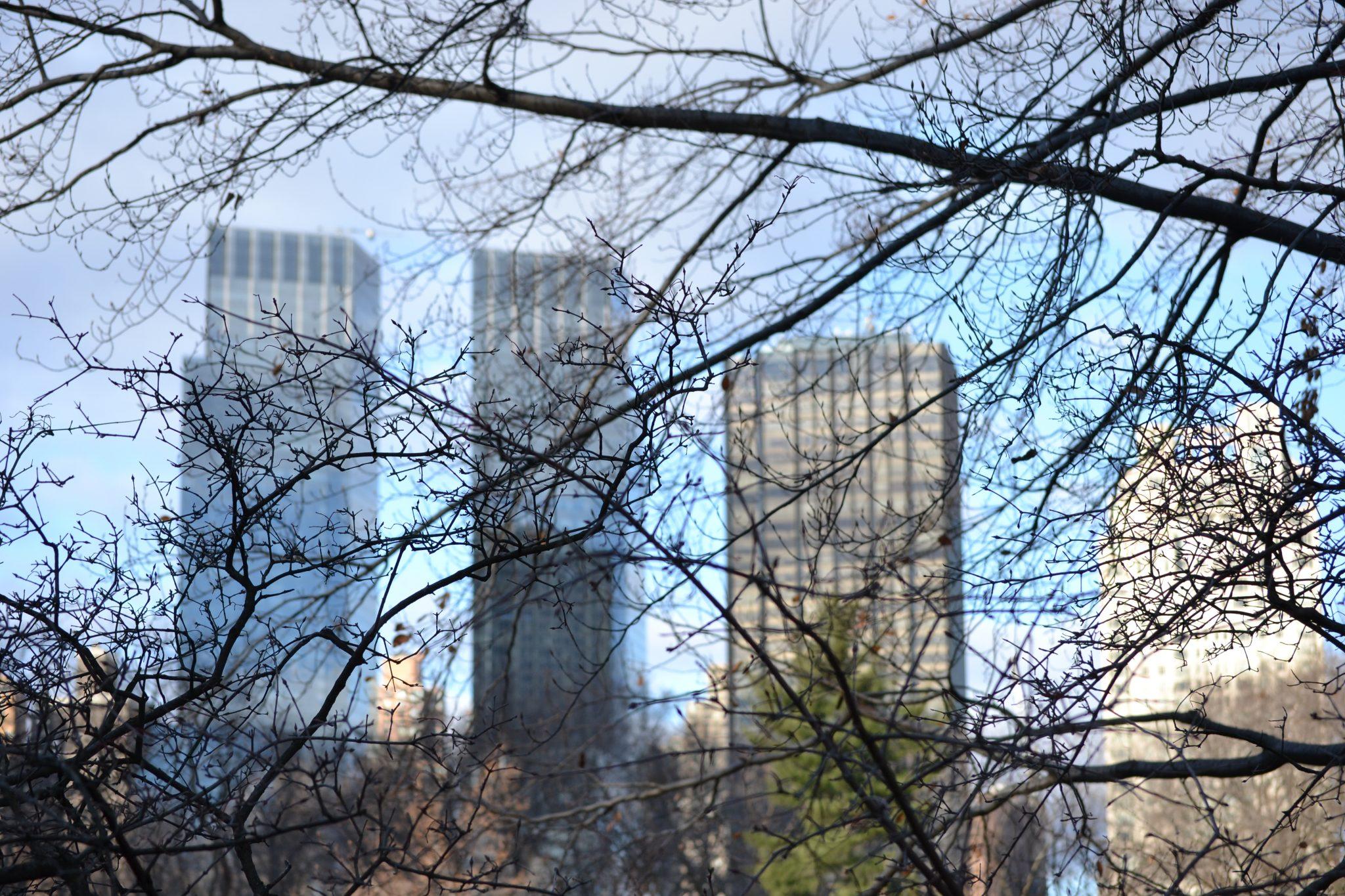 Travel Diary: Eine Woche in New York | USA - dsc 00602