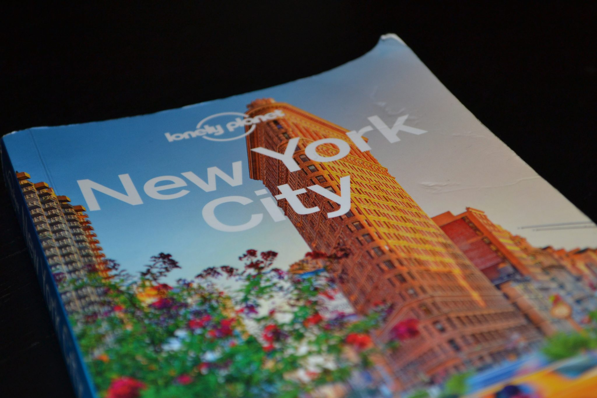 Review: Lonely Planet New York City - DSC 0038