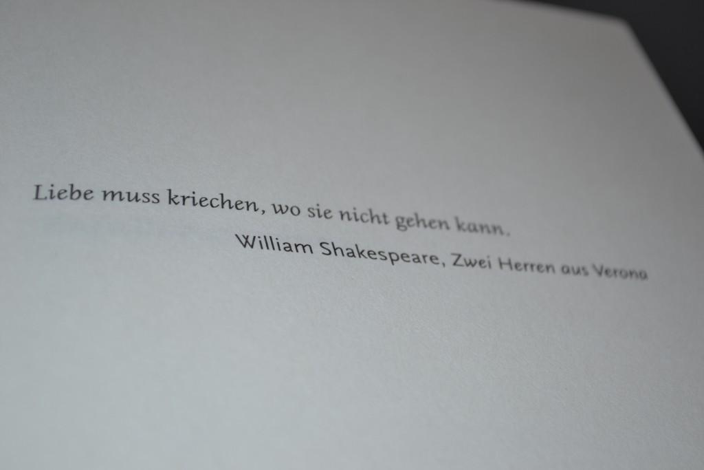 Books: Vielleicht morgen | Guillaume Musso - DSC 00151 1024x683