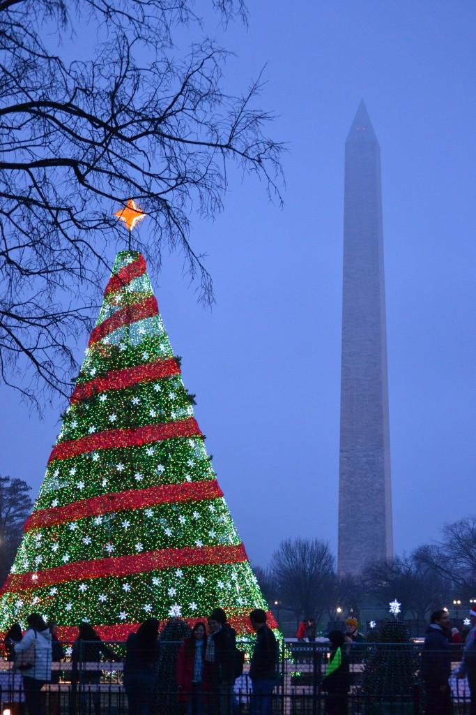 New York Part 9: Washington, D.C. - DSC 0294 e1425237691447 683x1024