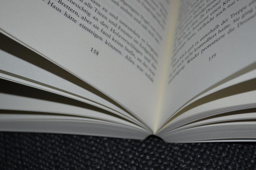Books: Ostseewut   Kirstin Warschau - DSC 0088 1024x683