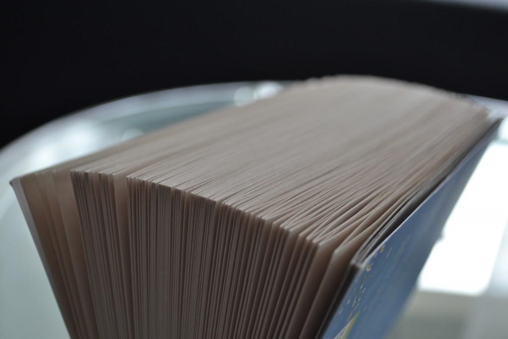 Books: How to Fall in Love   Cecelia Ahern - DSC 0449 1024x683