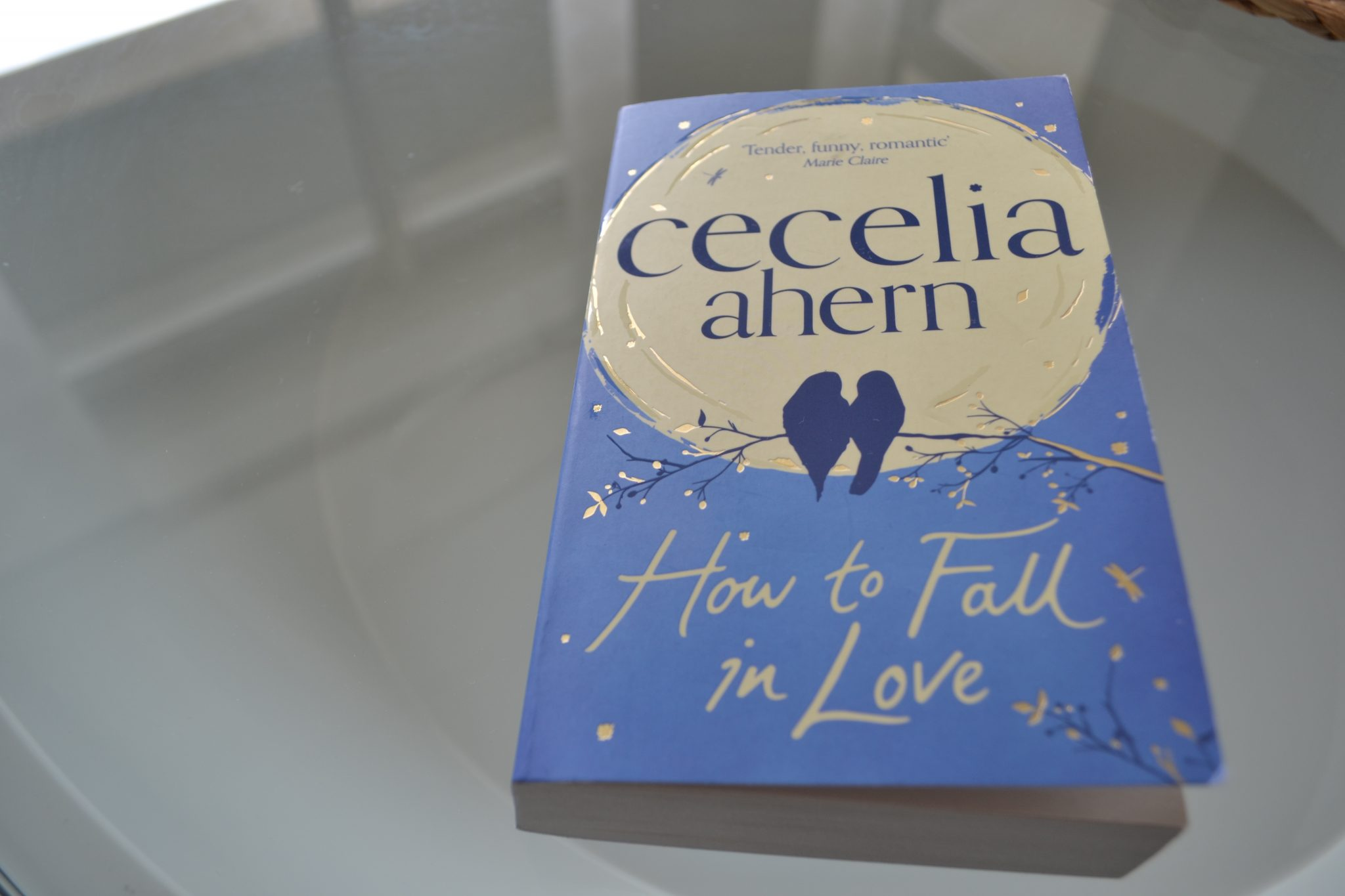 Books: How to Fall in Love | Cecelia Ahern - DSC 0448