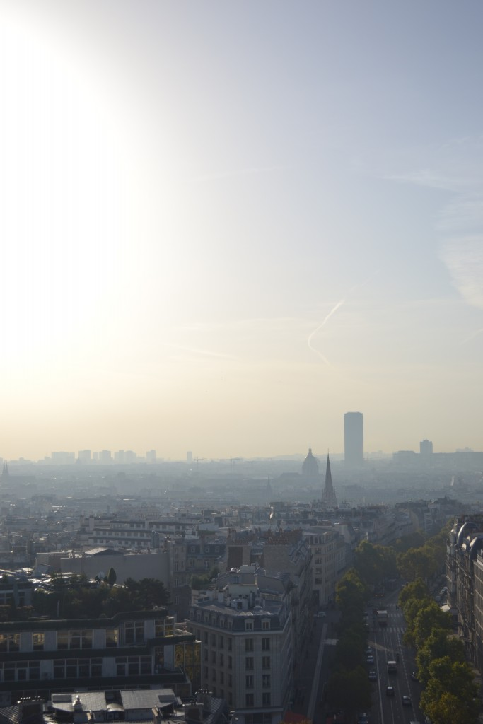 Travel Tip: Paris from above - DSC 0087 683x1024