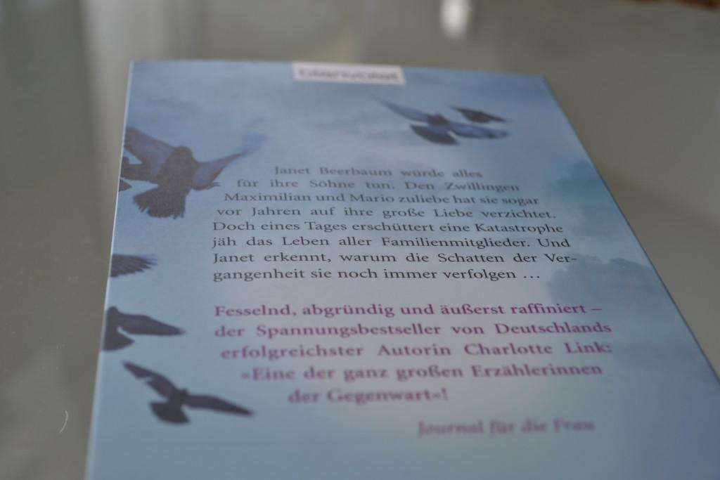 Books: Die Sünde der Engel | Charlotte Link - DSC 0501 1024x683