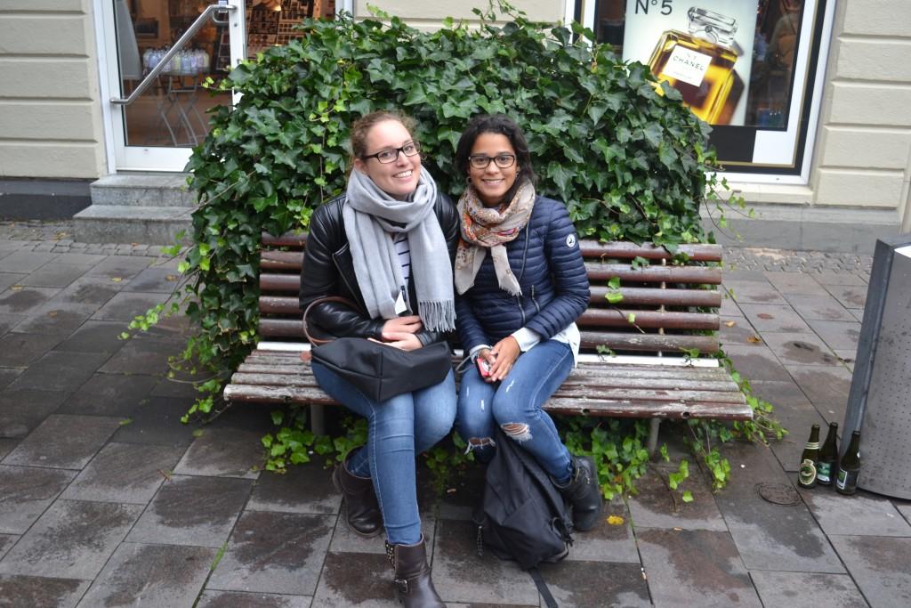 Silkeborg | Dänemark 2015 - DSC 0028 1024x683
