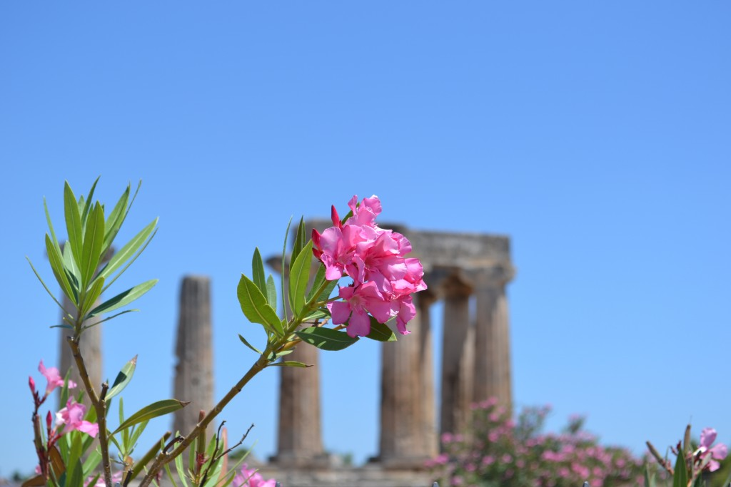 Travel Diary: Korinth | Griechenland Teil 1 - DSC 0164 1024x683
