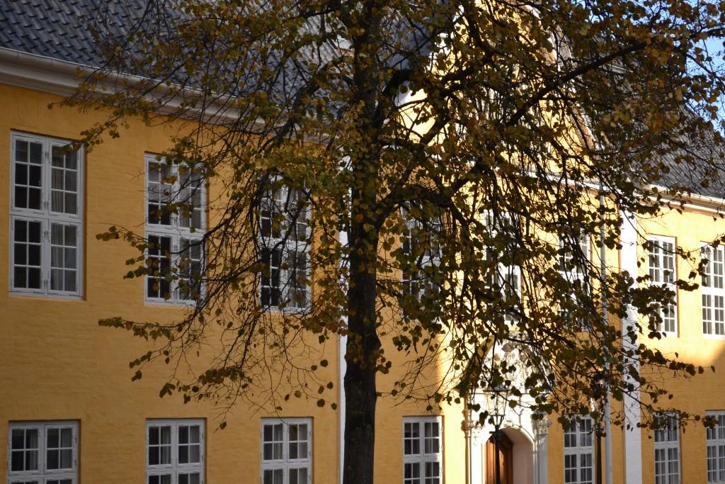 Aalborg | Dänemark Roadtrip Teil 1 - DSC 0370 1024x683