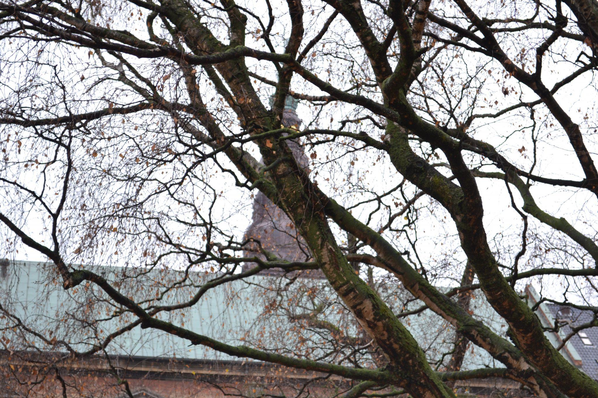 Travel Tip: Sightseeing in Copenhagen