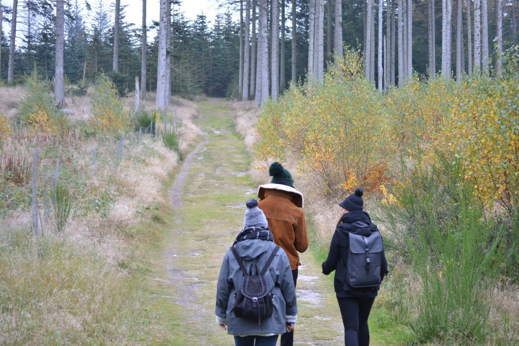 Travel Diary: Dänemark Roadtrip | Blokhus & Thy Nationalpark - DSC 0048 1024x683